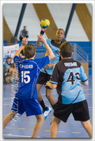 VECHandball-14G(1)-011212-0821