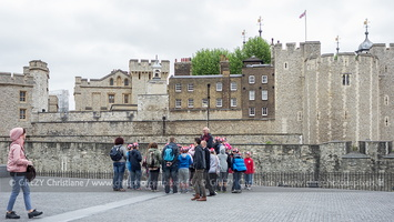 25-Londres-Tower of London-130613-01557
